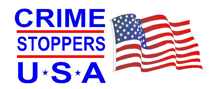 CSUSA Logo